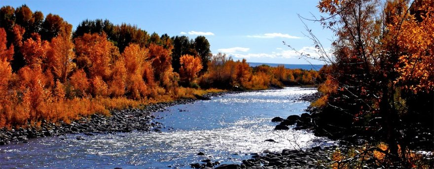North Fork of the Gunnison River